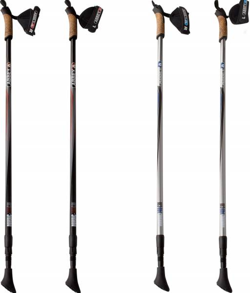 Nordicwalking stok